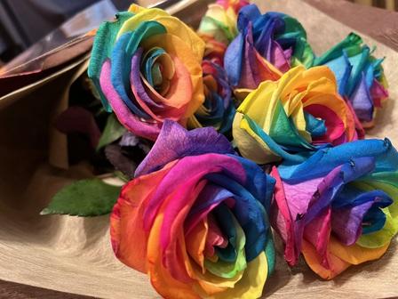 レインボー 薔薇、サプライズ 薔薇、サプライズ バラ